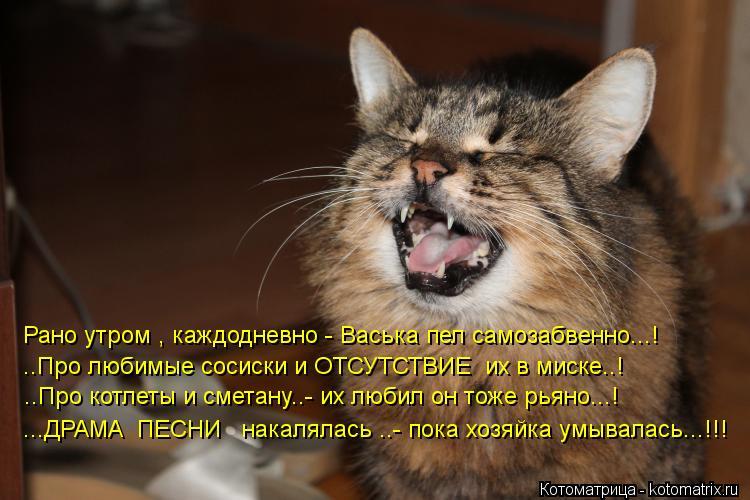 Котоматрица: Рано утром , каждодневно - Васька пел самозабвенно...! ..Про любимые сосиски и ОТСУТСТВИЕ  их в миске..! ..Про котлеты и сметану..- их любил он тож