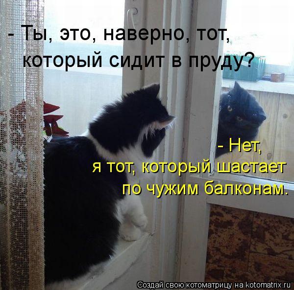 Котоматрица: - Ты, это, наверно, тот, который сидит в пруду? - Нет, я тот, который шастает по чужим балконам.