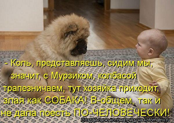 Котоматрица: - Коль, представляешь, сидим мы, значит, с Мурзиком, колбасой  трапезничаем, тут хозяйка приходит, злая как СОБАКА! В-общем, так и не дала поест