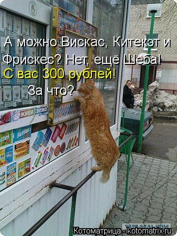 Котоматрица: А можно Вискас, Китекэт и  Фрискес? Нет, ещё Шеба!  С вас 300 рублей! За что?