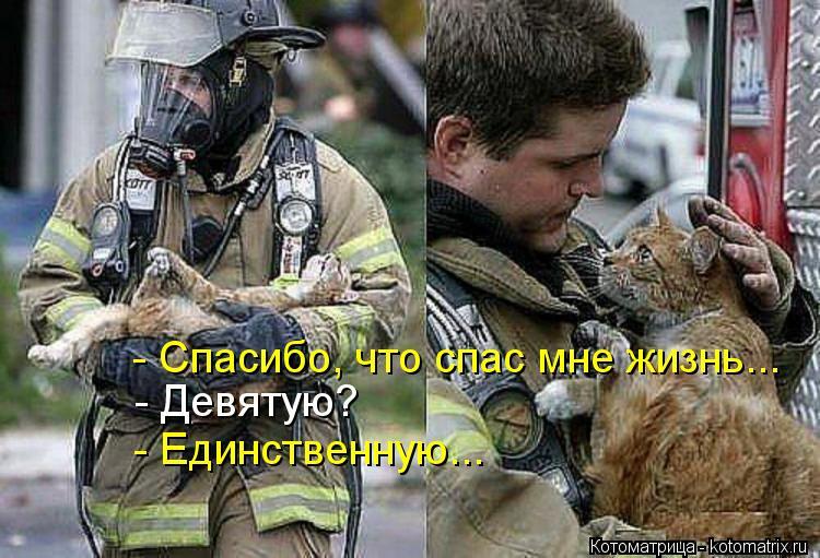 Котоматрица: - Спасибо, что спас мне жизнь... - Девятую? - Единственную...