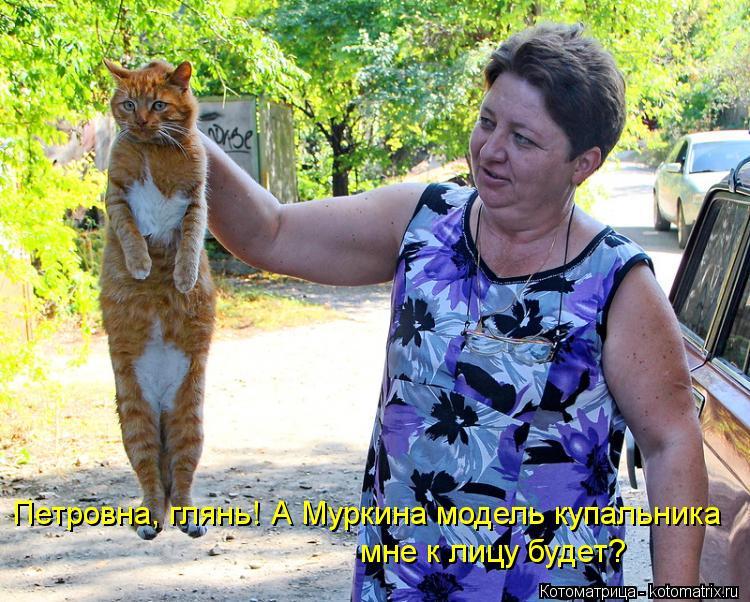 Котоматрица: Петровна, глянь! А Муркина модель купальника  мне к лицу будет?
