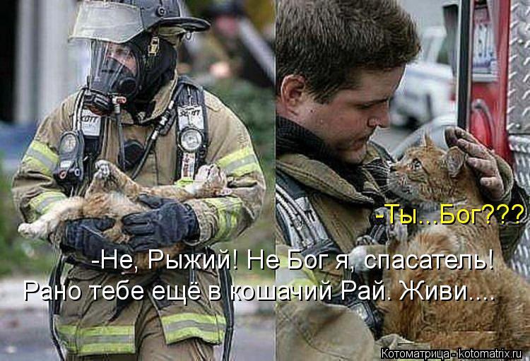 Котоматрица: -Ты...Бог??? -Не, Рыжий! Не Бог я, спасатель! Рано тебе ещё в кошачий Рай. Живи....