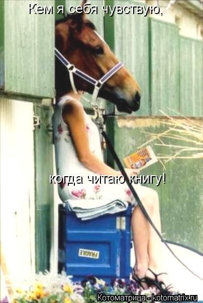 Котоматрица: Кем я себя чувствую, когда читаю книгу!