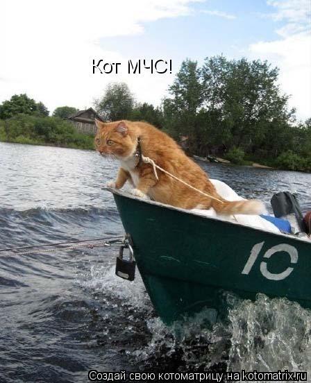 Котоматрица: Кот МЧС!