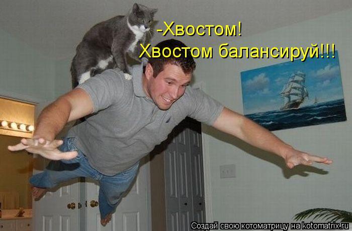 Котоматрица: -Хвостом!  Хвостом балансируй!!!