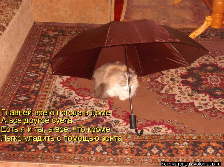 важней всего погода в доме фото