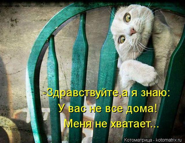 Котоматрица: -Здравствуйте,а я знаю: Меня не хватает... У вас не все дома!