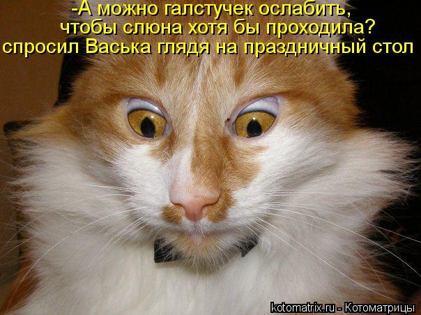Котоматрица: -А можно галстучек ослабить, чтобы слюна хотя бы проходила? спросил Васька глядя на праздничный стол