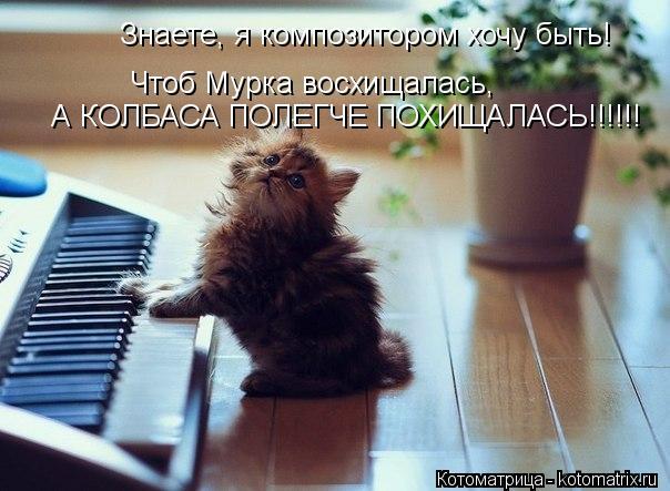 Котоматрица: Знаете, я композитором хочу быть! Чтоб Мурка восхищалась, А КОЛБАСА ПОЛЕГЧЕ ПОХИЩАЛАСЬ!!!!!!