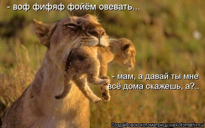 Котоматрица: - воф фифяф фойём овевать... - мам, а давай ты мне всё дома скажешь, а?..