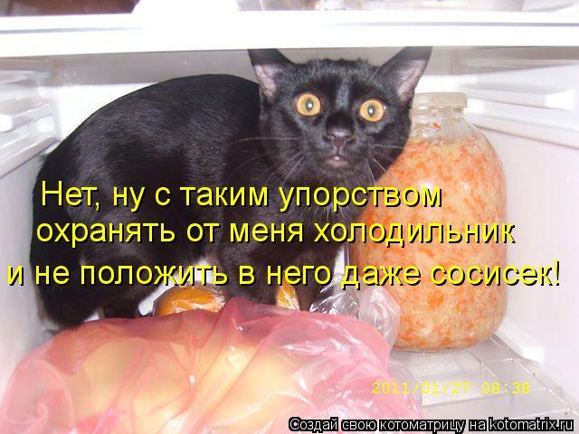 Котоматрица: Нет, ну с таким упорством охранять от меня холодильник и не положить в него даже сосисек!