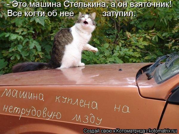 Котоматрица: - Это машина Стелькина, а он взяточник! Все когти об нее            затупил.