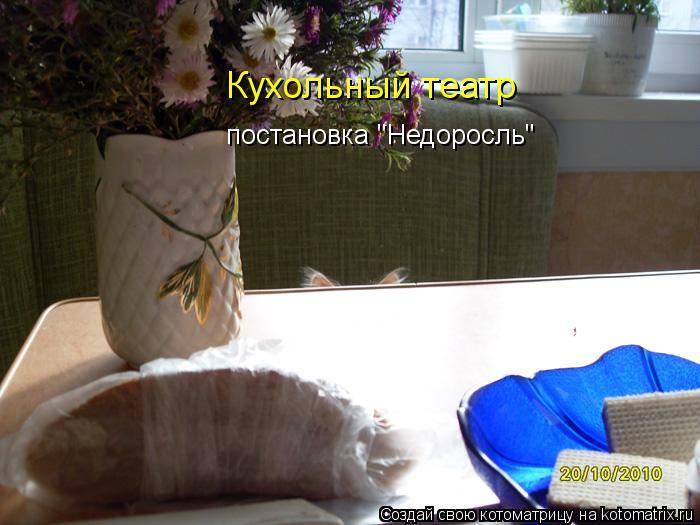 """Котоматрица: постановка """"Недоросль"""" Кухольный театр"""