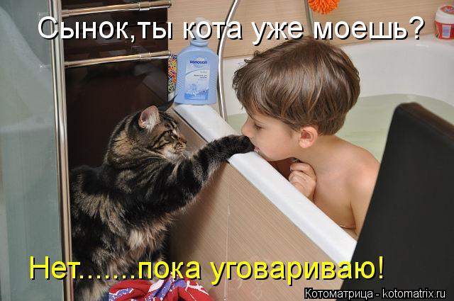 Котоматрица: Сынок,ты кота уже моешь? Нет.......пока уговариваю!