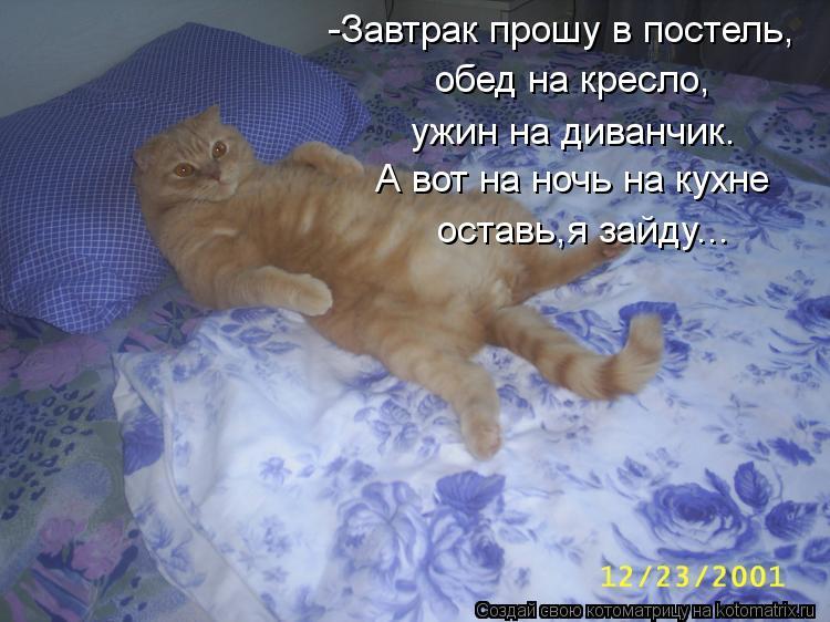 Котоматрица: -Завтрак прошу в постель, обед на кресло, ужин на диванчик. А вот на ночь на кухне  оставь,я зайду...