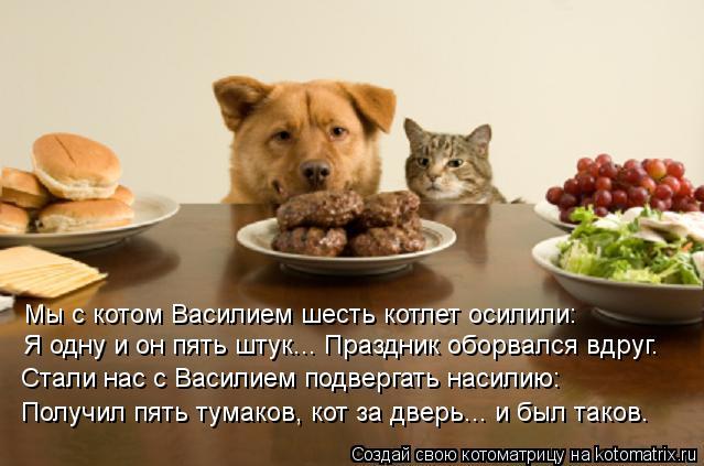 Котоматрица: Я одну и он пять штук... Праздник оборвался вдруг. Мы с котом Василием шесть котлет осилили: Получил пять тумаков, кот за дверь... и был таков. С