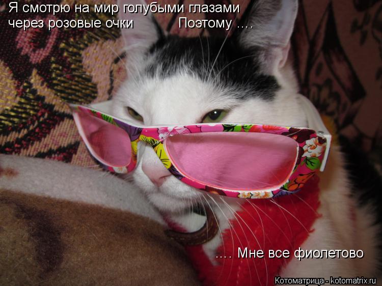 Котоматрица: …. Мне все фиолетово через розовые очки           Поэтому ….   Я смотрю на мир голубыми глазами