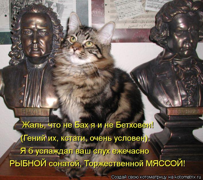Котоматрица: Жаль, что не Бах я и не Бетховен! (Гений их, кстати, очень условен). Я б услаждал ваш слух ежечасно РЫБНОЙ сонатой, Торжественной МЯССОЙ!