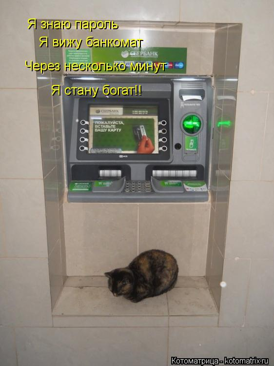 Котоматрица: Я знаю пароль Я вижу банкомат Через несколько минут Я стану богат!!