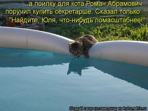 Котоматрица: ...а поилку для кота Роман Абрамович