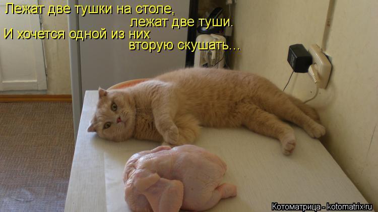 Котоматрица: Лежат две тушки на столе,  лежат две туши.  И хочется одной из них вторую скушать...
