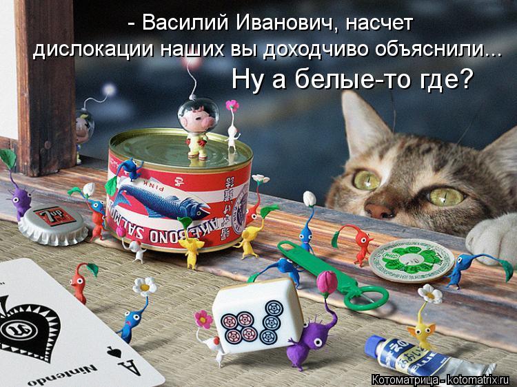 Котоматрица: - Василий Иванович, насчет дислокации наших вы доходчиво объяснили... Ну а белые-то где?