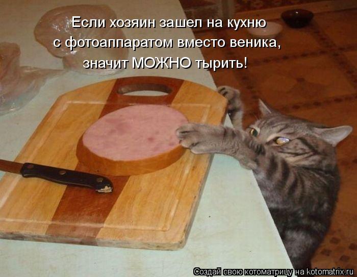 Котоматрица: Если хозяин зашел на кухню с фотоаппаратом вместо веника, значит МОЖНО тырить!