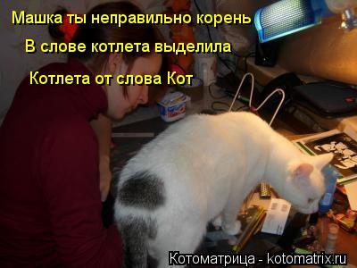 Котоматрица: Машка ты неправильно корень В слове котлета выделила Котлета от слова Кот