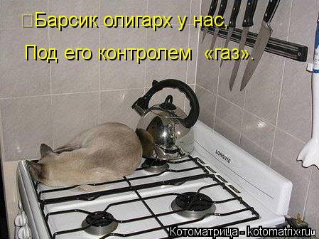 Котоматрица: Барсик олигарх у нас, Под его контролем  «газ».