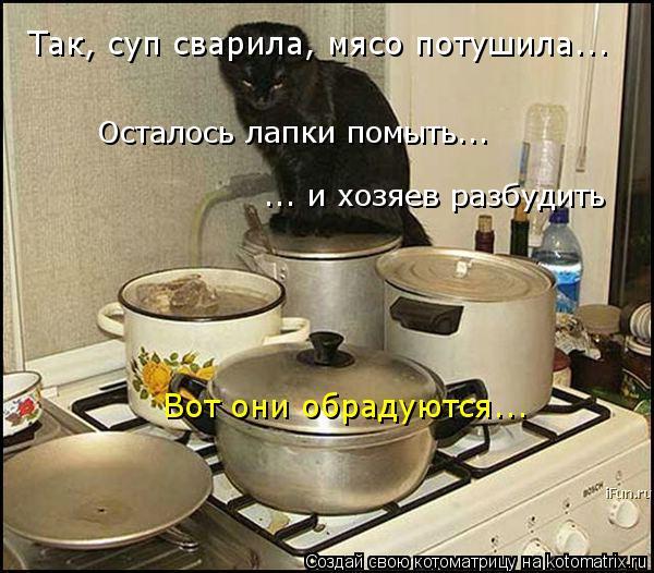 Котоматрица: Так, суп сварила, мясо потушила... Вот они обрадуются... Осталось лапки помыть... ... и хозяев разбудить