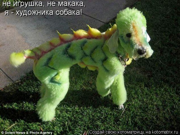 Котоматрица: не игрушка, не макака, я - художника собака!