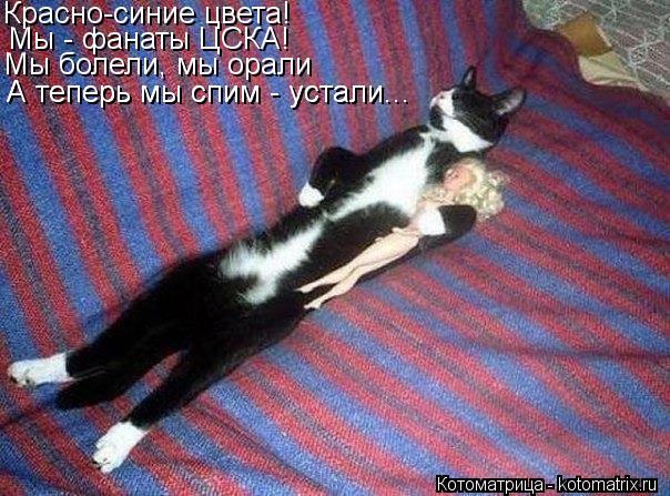 Котоматрица: Красно-синие цвета! Мы - фанаты ЦСКА! Мы болели, мы орали А теперь мы спим - устали... А теперь мы спим - устали...