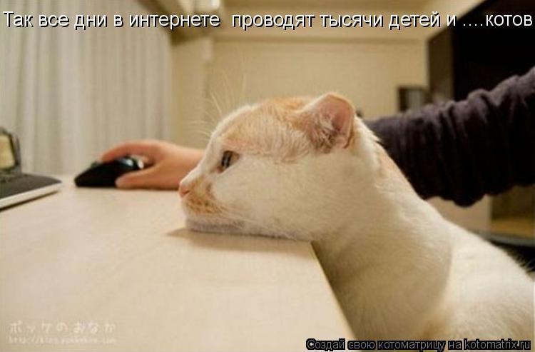 Котоматрица: Так все дни в интернете  проводят тысячи детей и ....котов