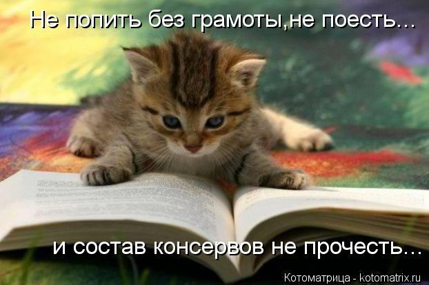 Котоматрица: Не попить без грамоты,не поесть... и состав консервов не прочесть...