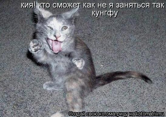 Котоматрица: кия! кто сможет как не я заняться так кунгфу кия! кто сможет как не я заняться так кунгфу кунгфу