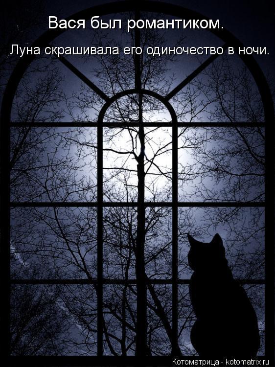 Котоматрица: Вася был романтиком. Луна скрашивала его одиночество в ночи.