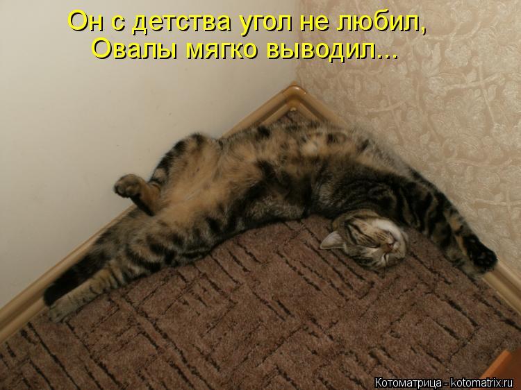 Котоматрица: Он с детства угол не любил, Овалы мягко выводил...