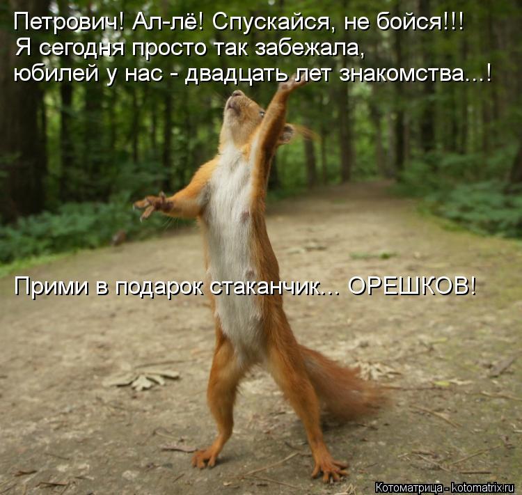 Котоматрица: Петрович! Ал-лё! Спускайся, не бойся!!! Я сегодня просто так забежала, юбилей у нас - двадцать лет знакомства...! Прими в подарок стаканчик... ОРЕ