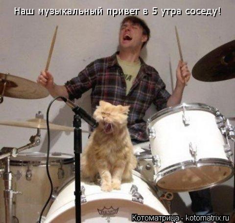 Котоматрица: Наш музыкальный привет в 5 утра соседу!