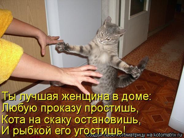 Котоматрица: Ты лучшая женщина в доме: Любую проказу простишь, Кота на скаку остановишь, И рыбкой его угостишь!