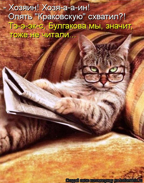 "Котоматрица: - Хозяин! Хозя-а-а-ин! Опять ""Краковскую"" схватил?! Тэ-э-эк-с, Булгакова мы, значит, тоже не читали..."
