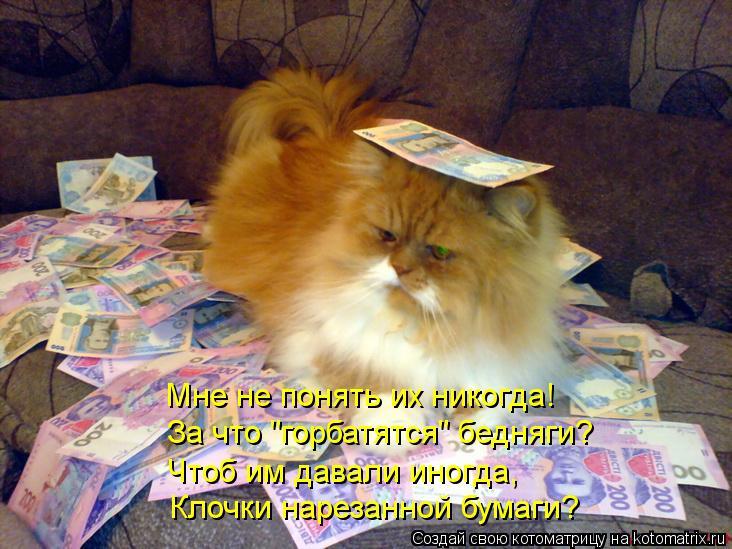 """Котоматрица: Мне не понять их никогда! За что """"горбатятся"""" бедняги? Чтоб им давали иногда, Клочки нарезанной бумаги?"""