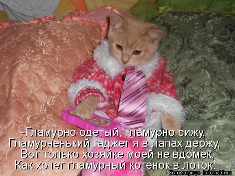 Котоматрица: -Гламурно одетый, гламурно сижу, Гламурненький гаджет я в лапах держу, Вот только хозяйке моей не вдомек, Как хочет гламурный котенок в лото
