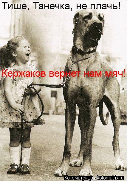Котоматрица: Тише, Танечка, не плачь! Кержаков вернет нам мяч!
