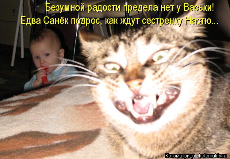 Котоматрица: Безумной радости предела нет у Васьки! Едва Санёк подрос, как ждут сестренку Настю...