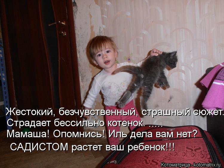 Котоматрица: Жестокий, безчувственный, страшный сюжет.  Страдает бессильно котенок.  Мамаша! Опомнись! Иль дела вам нет?  САДИСТОМ растет ваш ребенок!!!  ....