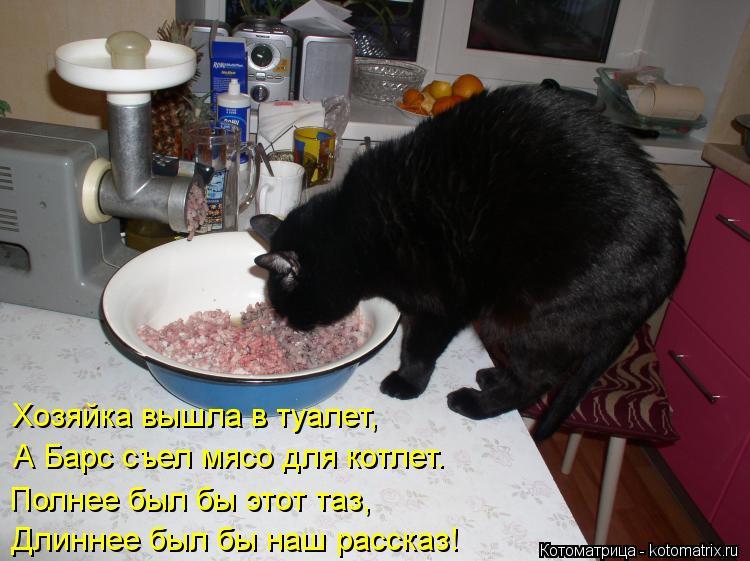 Котоматрица: Полнее был бы этот таз, Длиннее был бы наш рассказ! Хозяйка вышла в туалет, А Барс съел мясо для котлет.