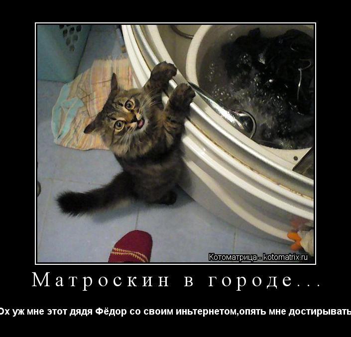 """Котоматрица: Матроскин в городе... """"Ох уж мне этот дядя Фёдор со своим иньтернетом,опять мне достирывать..."""