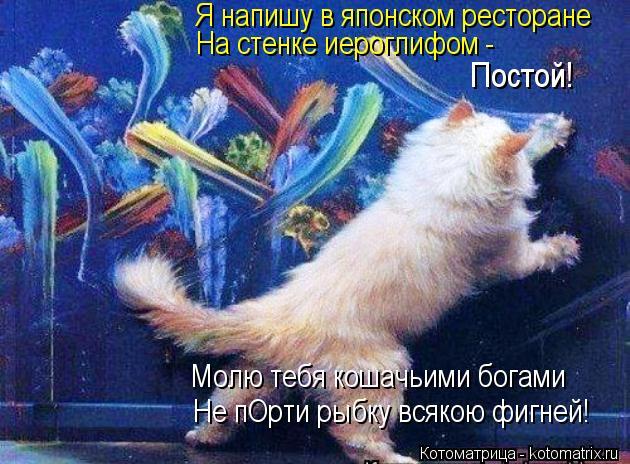 Котоматрица: Я напишу в японском ресторане На стенке иероглифом - Постой! Молю тебя кошачьими богами Не пОрти рыбку всякою фигней!